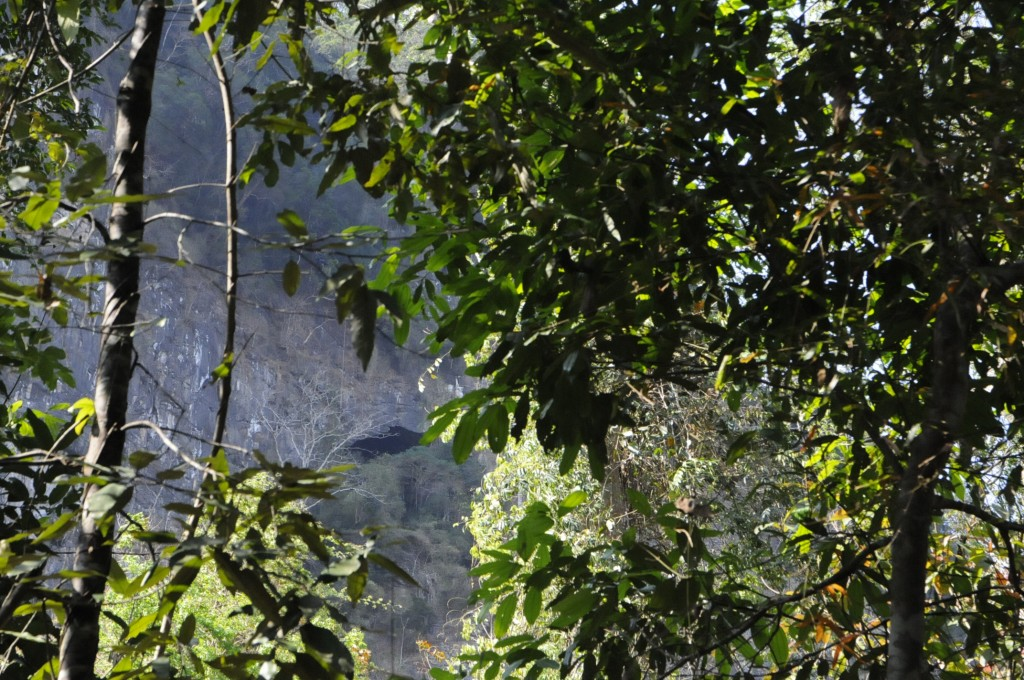 Tham Wouf 60 m d'escalade en falaise et 60 m d'escalade sur coulée stalagmitique